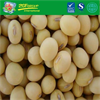 Good Grade New Crop Dry Yellow Soybeans