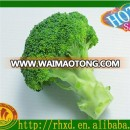 Fresh vegetables/ fresh broccoli price